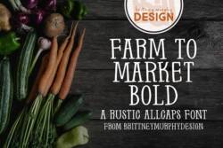 Farm to Market Bold Font