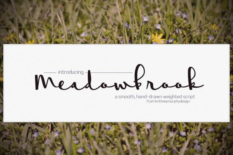 meadowbrook featured image