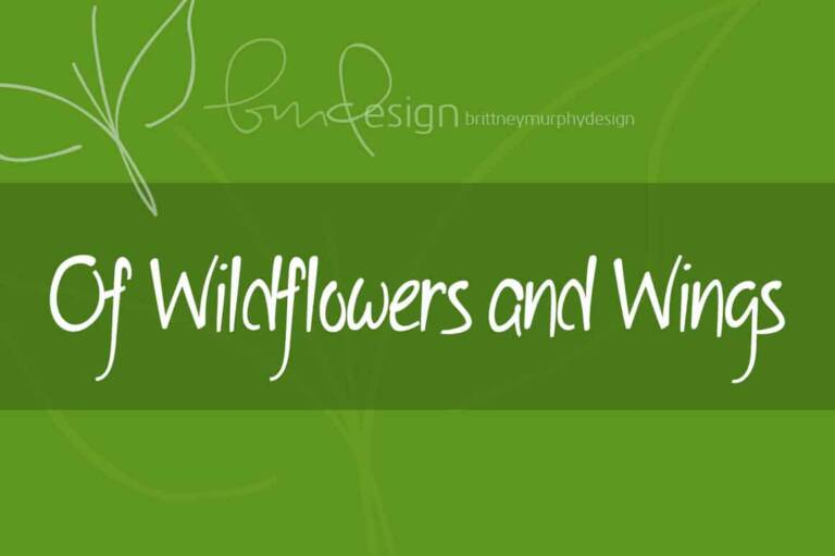 of wildflowers and wings featured image